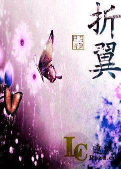 折翼(翅膀)