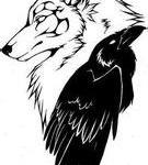 进入狼乌鸦的专栏
